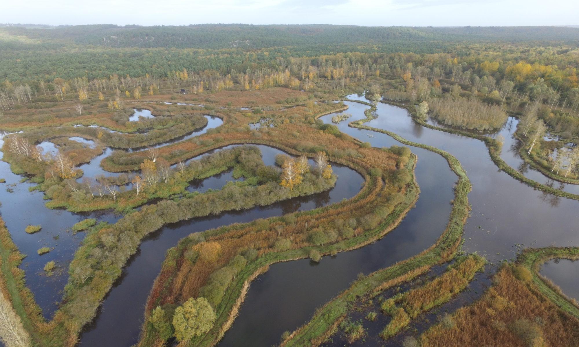 Le Marais de Larchant